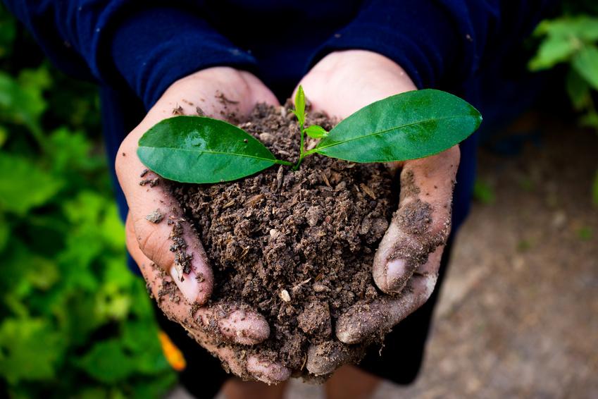 Nachhaltige Etiketten Bioetiketten