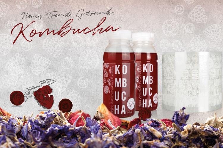 Kombucha_Blog_Beitragsbild